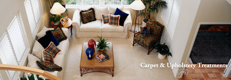 Carpet & Upholstery Treatments